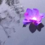 Spiritueller Impuls - Impressionen